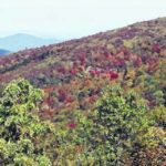 Fall colors in the southern Appalachians off to an early start